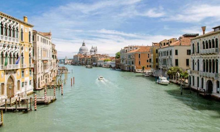 Tourists go nude swimming in Venice canal, got themselves